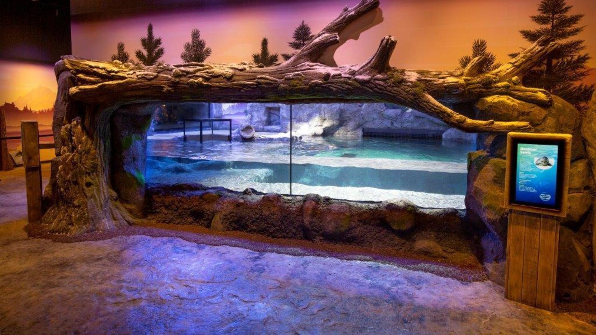 Marine Mammal Rescue Centre